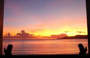 ホテルを守り海を眺めるシーサー